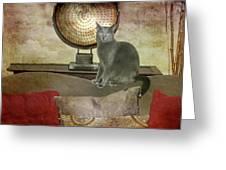 Cat-tastic Greeting Card
