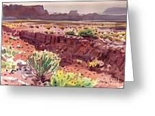 Arizona Arroyo Greeting Card