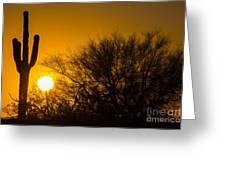 Arizona Cactus #2 Greeting Card