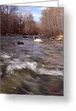 Arizona Creek Greeting Card