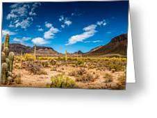 Arizona Desert #2 Greeting Card
