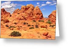 Arizona Elegance Greeting Card