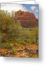Arizona Outback 3 Greeting Card by Mike McGlothlen