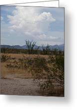 Arizona Rest Stop Greeting Card