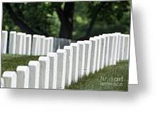 Arlington Cemetery Greeting Card by John Greim