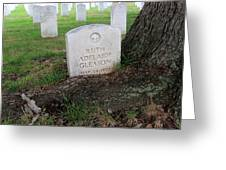 Arlington Tombstone Lodged In Tree Trunk Greeting Card