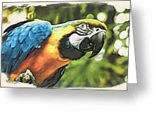 Art In Moku Hanga Style Greeting Card