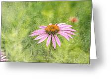 Artistic Cone Flower 2013-1 Greeting Card