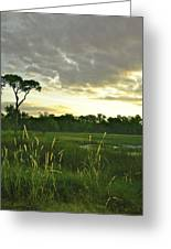 Artistic Lush Marsh Greeting Card