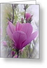 Artistic Magnolia Greeting Card