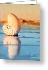 Artistic Nautilus Greeting Card