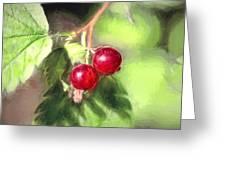 Artistic Panterly Two Wild Goosberries Greeting Card