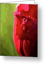 Artistic Red Tulip Greeting Card