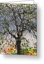Artistic Tree Greeting Card