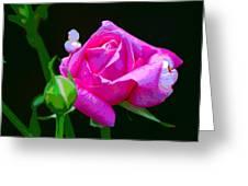 Artrose Greeting Card