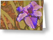 Artsy Iris Greeting Card