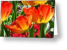 Artsy Tulips Greeting Card