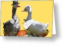 Thanksgiving Pilgrim Ducks Greeting Card