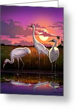 Whooping Cranes Tropical Florida Everglades Sunset Birds Landscape Scene Purple Pink Print Greeting Card