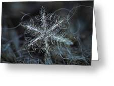 Leaves Of Ice Greeting Card by Alexey Kljatov