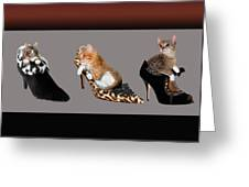 Kittens In Designer Ladies Shoes Greeting Card