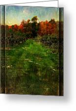 Into The Apple Orchard Greeting Card
