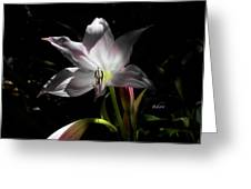 Lovely Lilies Partners Greeting Card