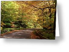 Mountain Road Stowe Vt Greeting Card