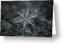 Stars In My Pocket Like Grains Of Sand Greeting Card