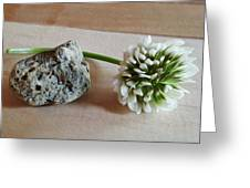 A Rock And A Soft Place Greeting Card