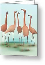 Flamingo Mingle Greeting Card