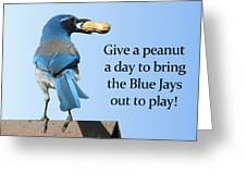 Blue Jay And A Peanut Greeting Card