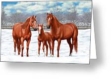 Chestnut Horses In Winter Pasture Greeting Card