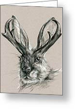 The Mythical Jackalope Greeting Card