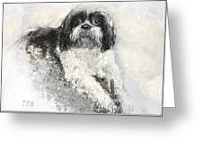 Shi-tzu Greeting Card