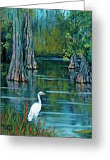 The Fisherman Greeting Card by Dianne Parks