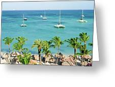 Aruba Shore Greeting Card