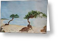 Aruba Sunrise Greeting Card