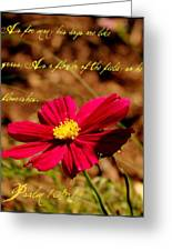As A Flower Of The Fields Greeting Card