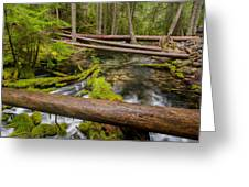 As The Creek Flows Greeting Card