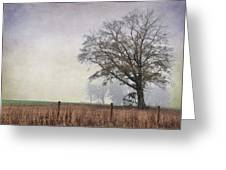 As The Fog Sets In Greeting Card