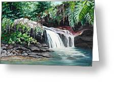 Asa Wright Falls      Sold Greeting Card