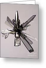 Ascorbic Acid Crystal Greeting Card