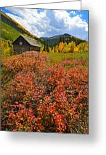 Ashcroft Cabin Greeting Card