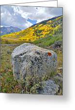 Ashcroft Colors Greeting Card