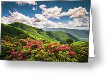 Asheville Nc Blue Ridge Parkway Spring Flowers Scenic Landscape Greeting Card