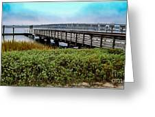 Ashley River Sc Greeting Card