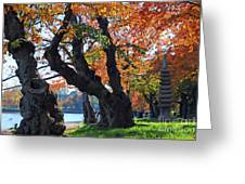 Asian Cherry Trees Of Fall Greeting Card