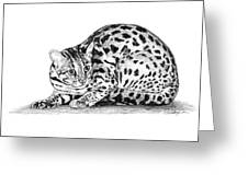 Asian Leopard Cat Greeting Card