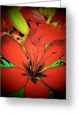 Asian Lily Greeting Card